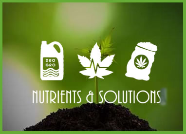 Shop Pot Grow Nutrients & Solutions