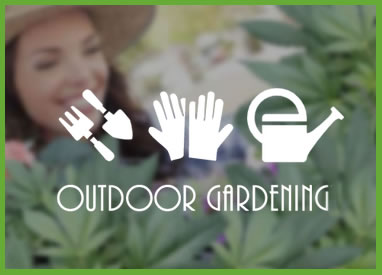 Outdoor Gardening Category