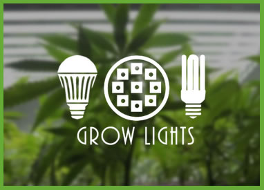 Shop Cannabis Grow Lights & Supplies