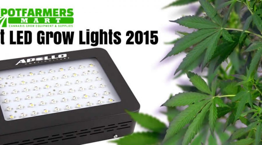 Best LED Grow Lights Cannabis 2015